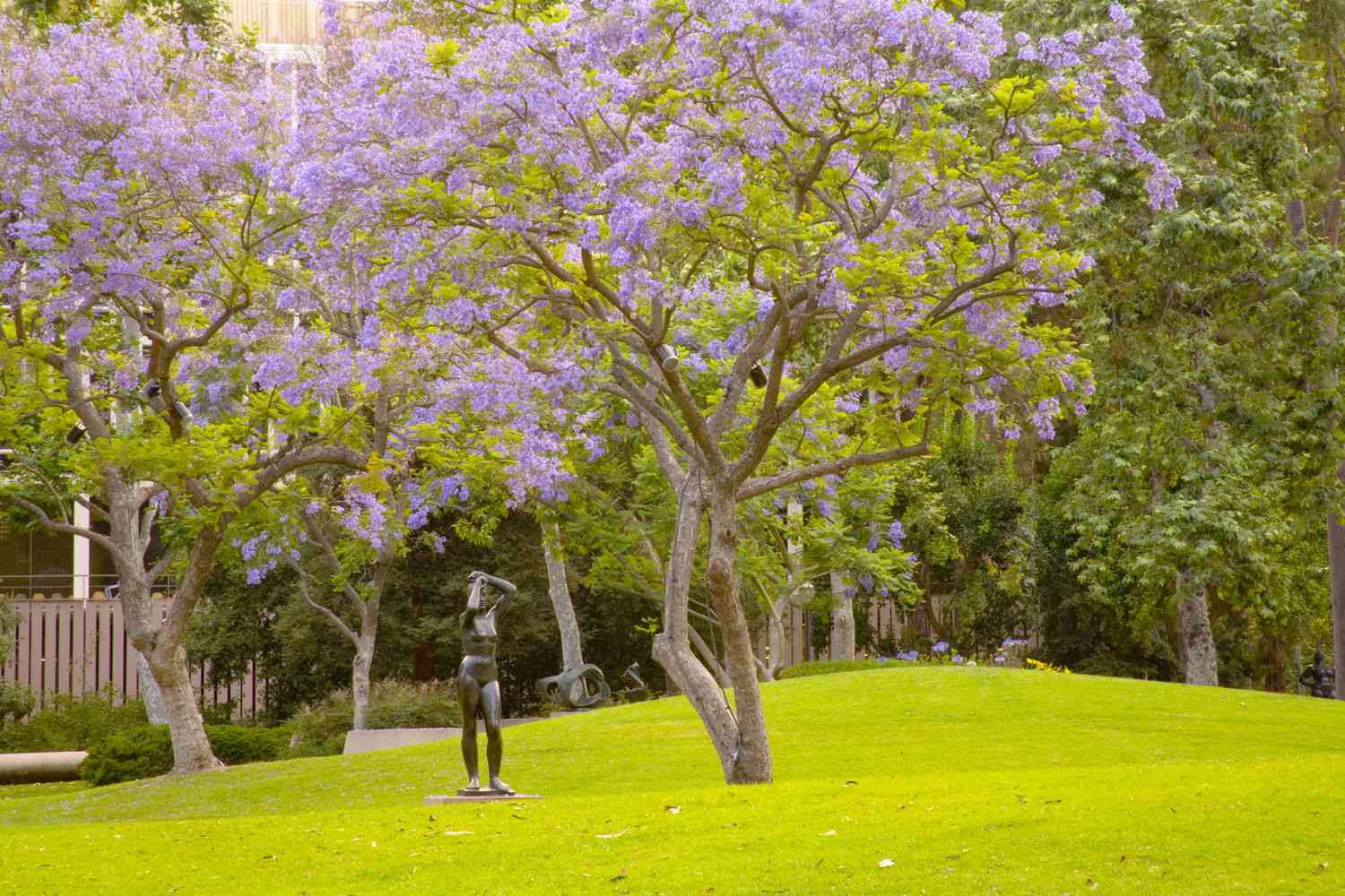 bronze statue of a woman in a green field under a purple blooming tree
