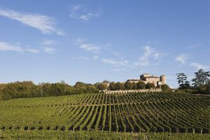 France, Bordeaux, Vineyards and Chateau Lacaussade