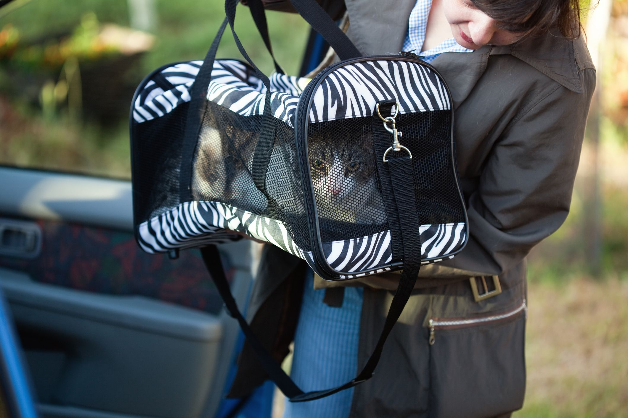 The 10 Best Cat Carriers of 2020