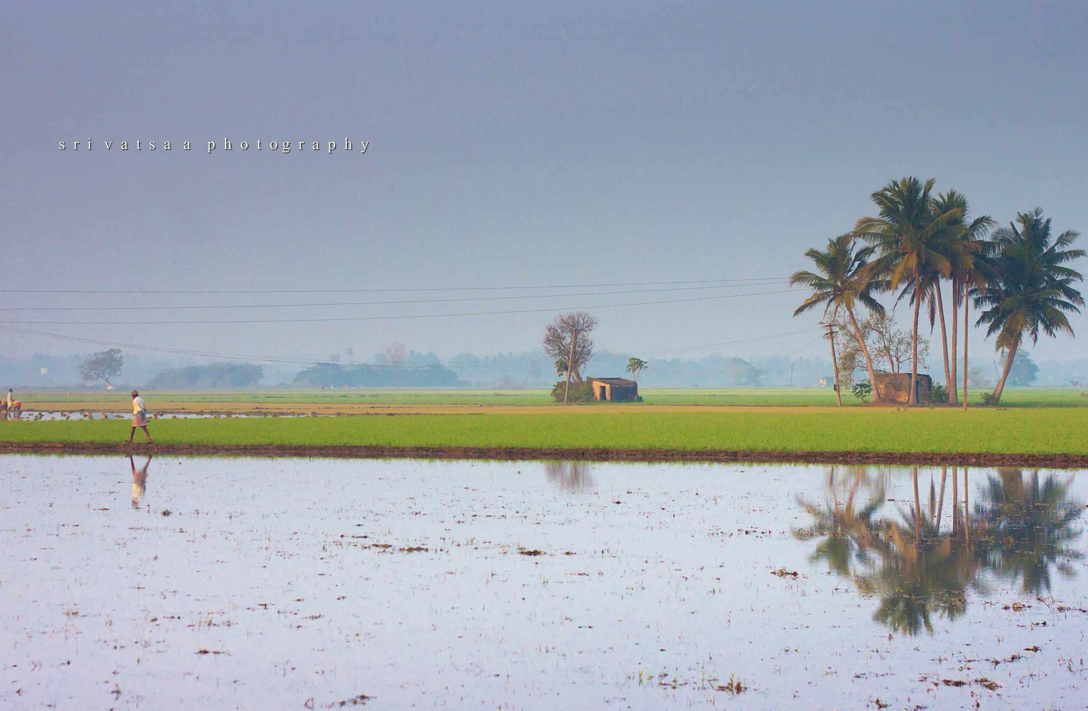 Countryside near Chennai.