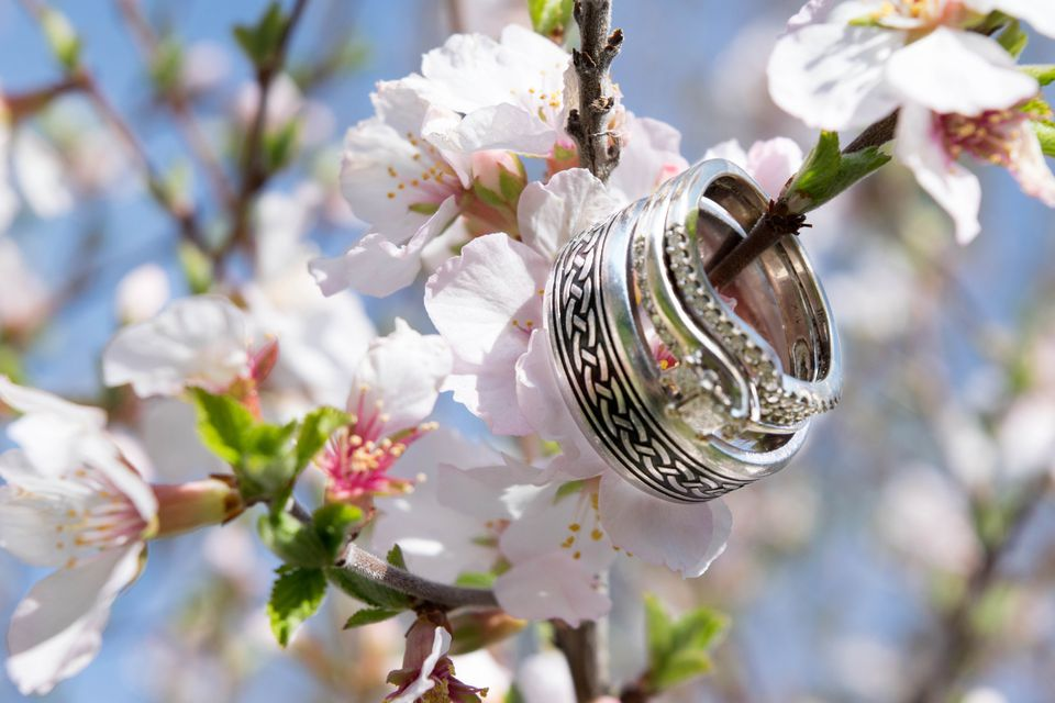 Low Angle View Of White Flowers With Wedding Rings On Branches