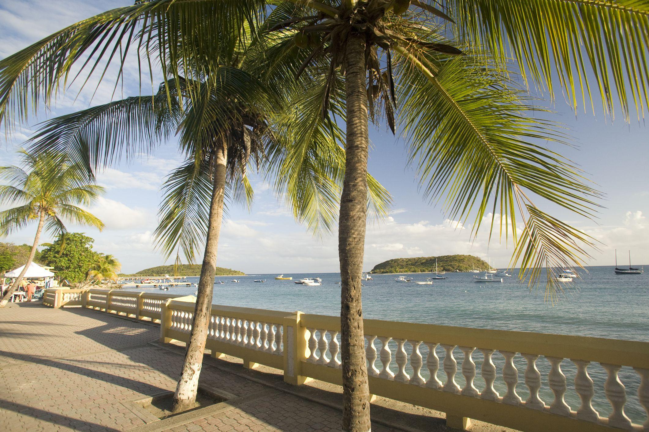 Palm trees and promenade in Esperanza