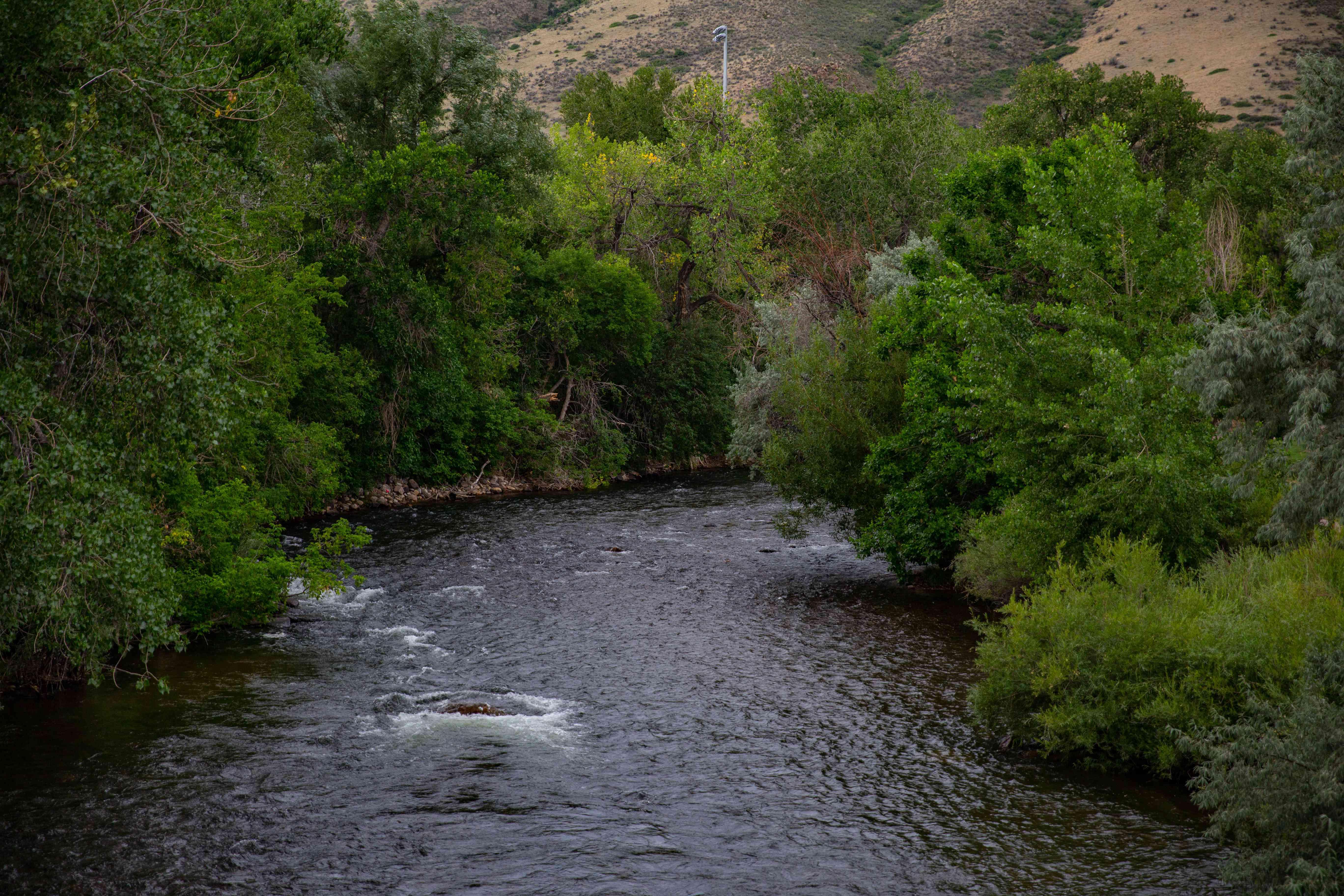 Clear Creek Tubing in Colorado