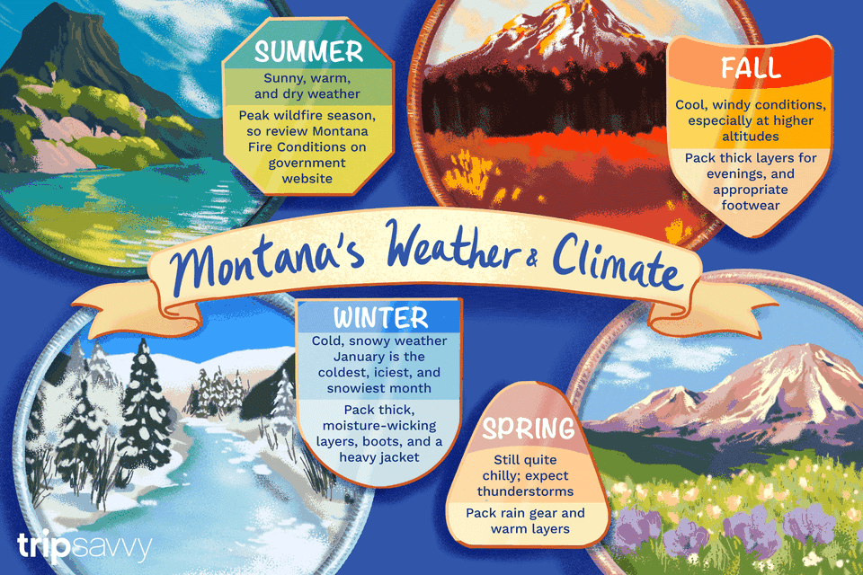 colorful illustration of Montana's four seasons