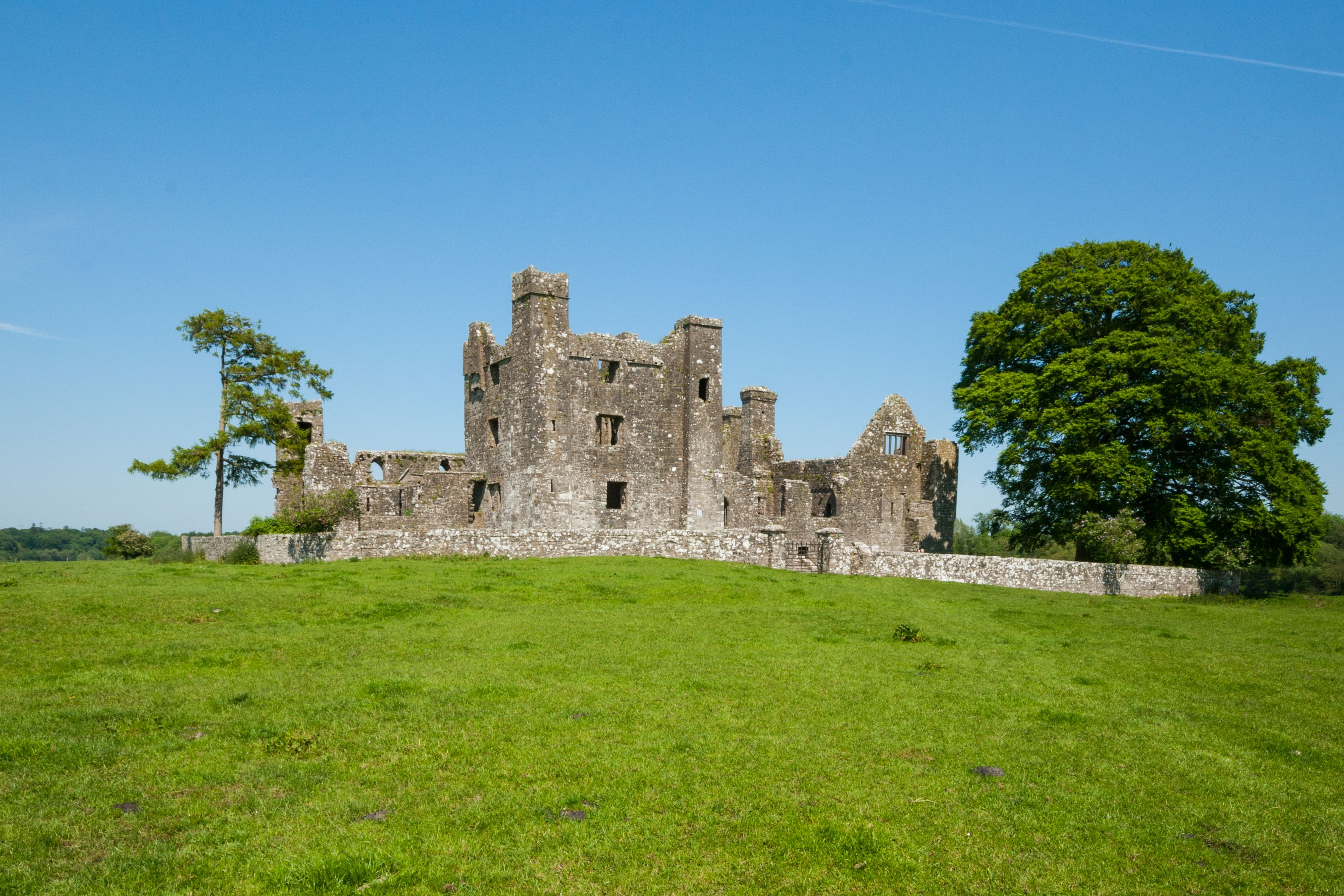 Bective Abbey ruins in Meath