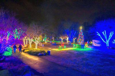 Meadowlark Gardens Christmas Lights in