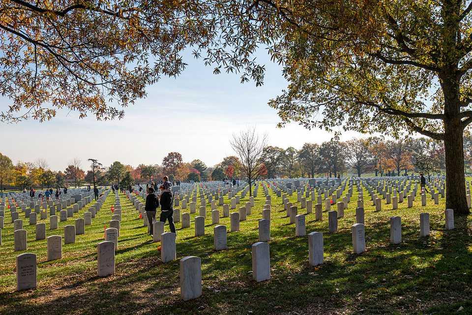 Veterans Day at Arlington National Cemetery
