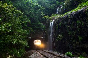 The evergreen western Ghats between Goa and Mumbai