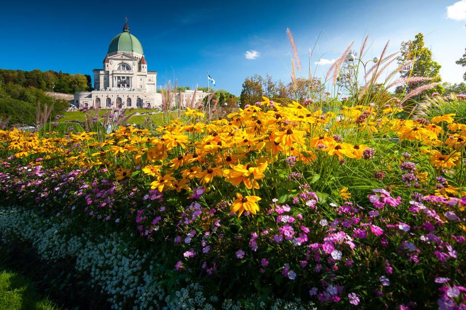 Saint Joseph's Oratory in spring
