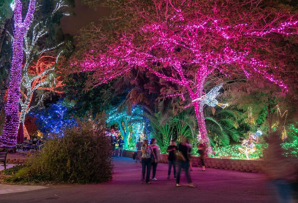 ZooLights Holiday Event at the Phoenix Zoo (2018–2019)