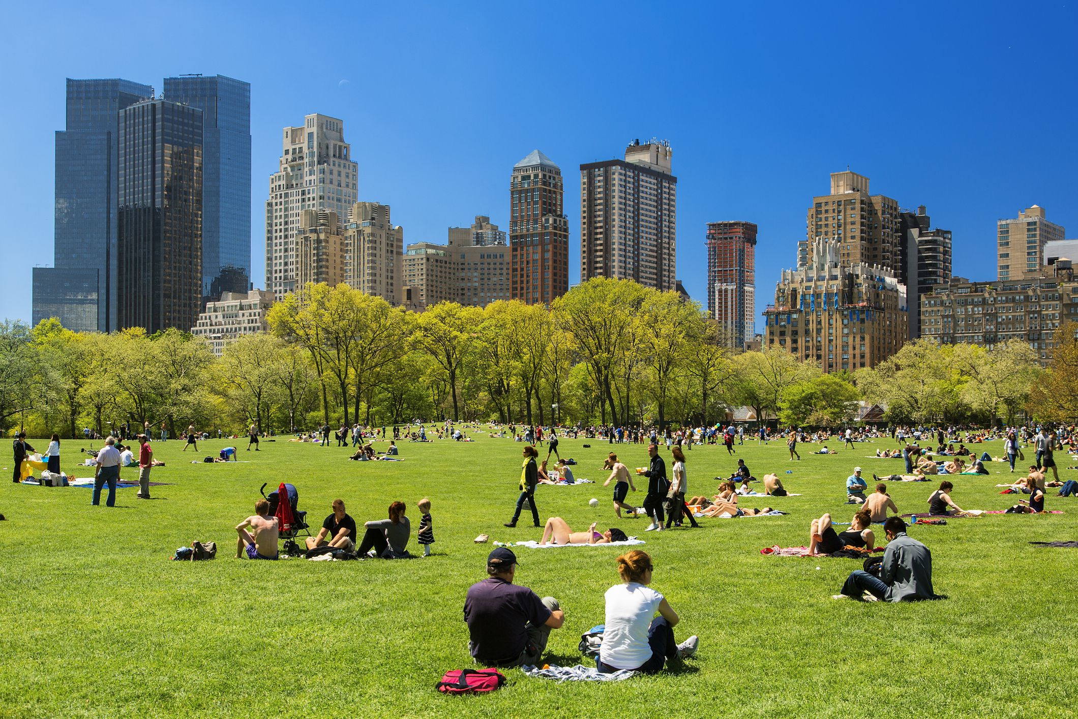 Top 9 Central Park Attractions