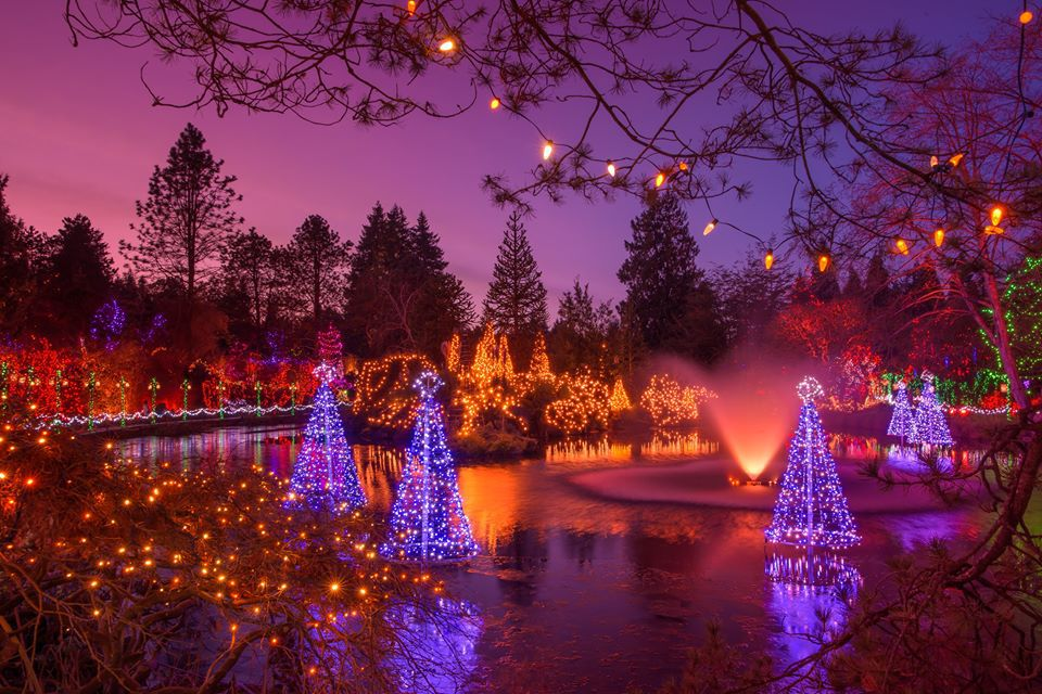 VanDusen's Botanical Garden's Festival of Lights