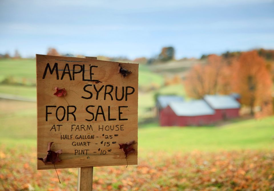 Maple Sugar Getaways with Kids
