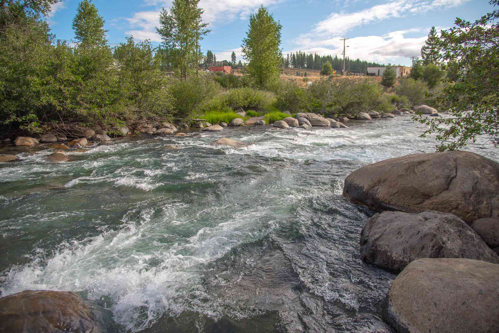 White water rapids on Truckee River