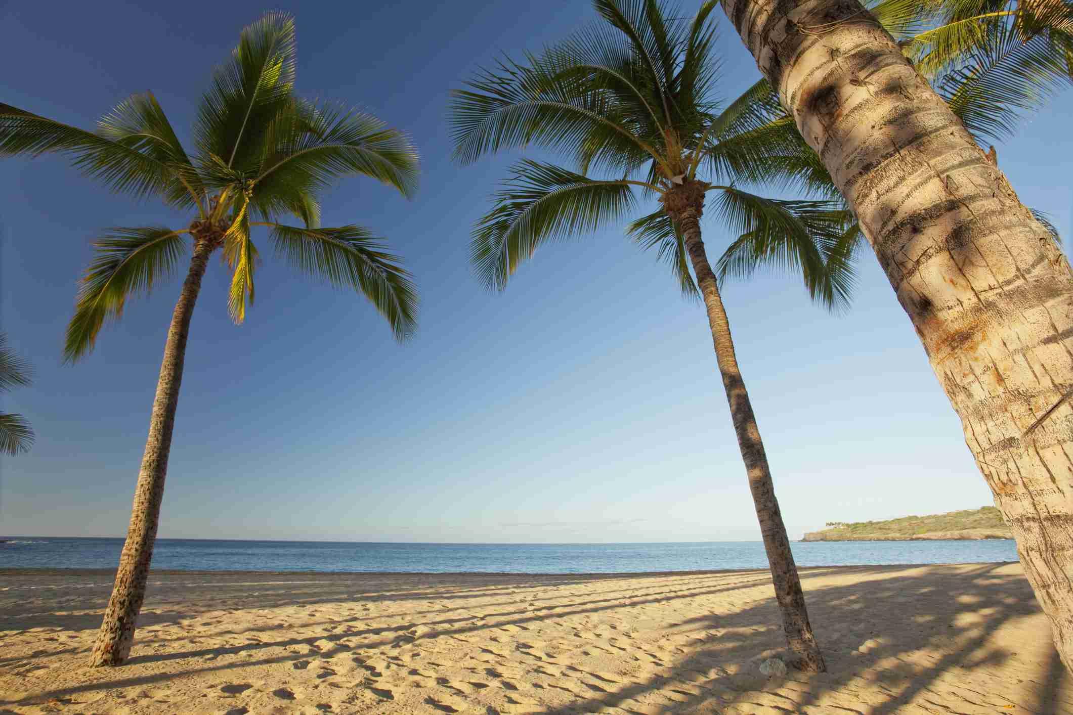 Hulopoe beach in Hawaii.