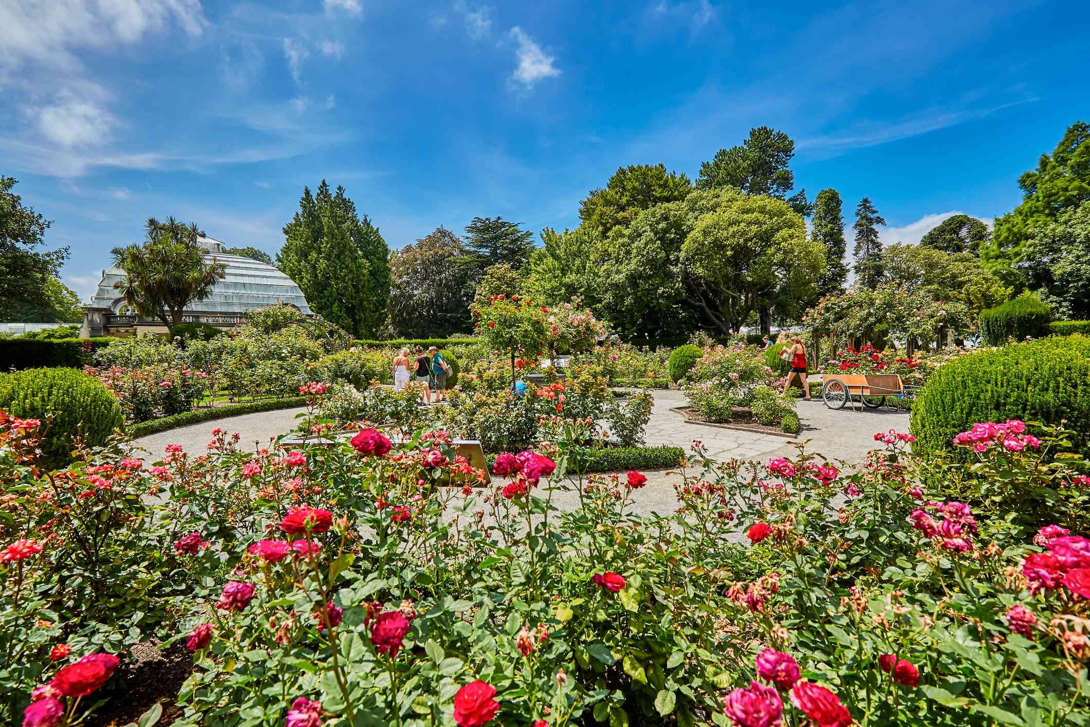 jardines formales y jardines de flores de los jardines botánicos de Christchurch en flor en verano en la ciudad de Christchurch