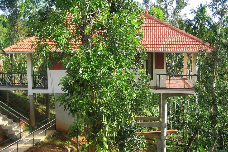 Luxury cottage at Glenora Homestay.