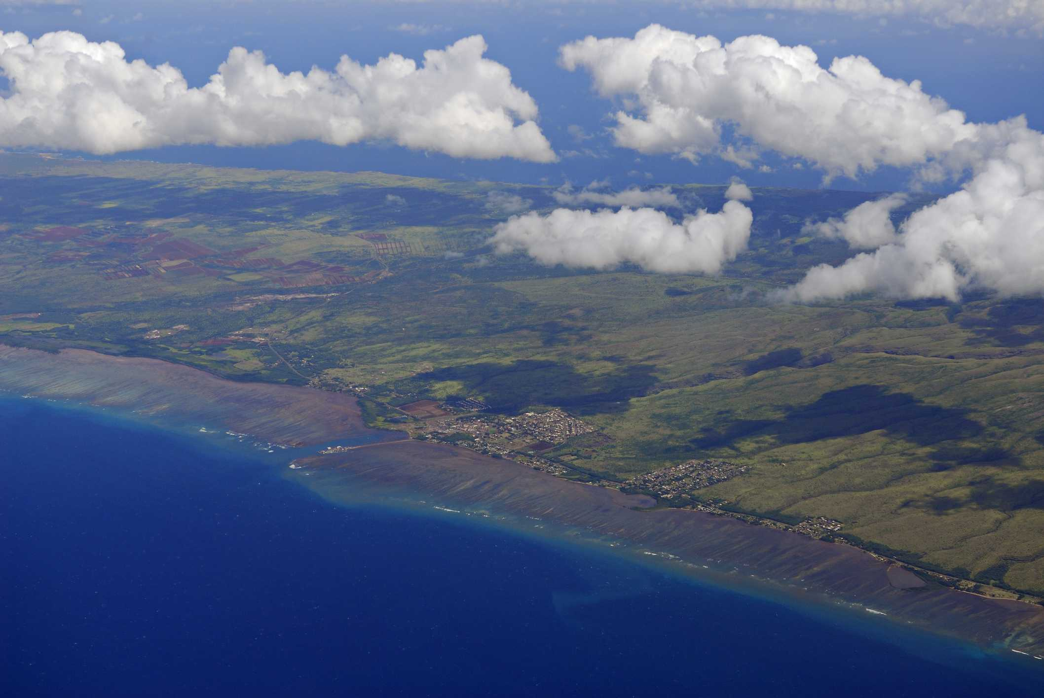 Moloka'i coffee plantation as seen from high above