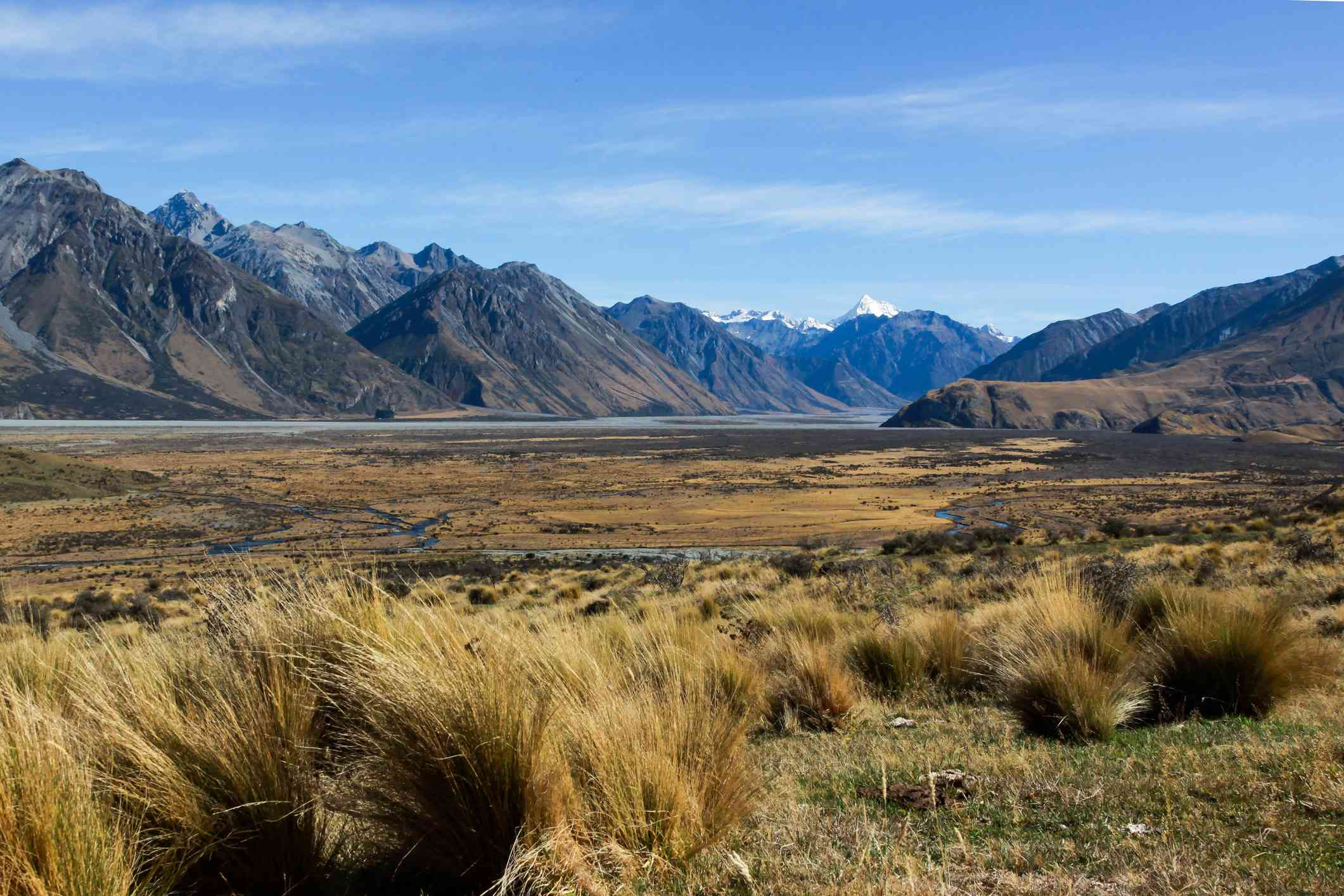 mountains and grassy plains Canterbury