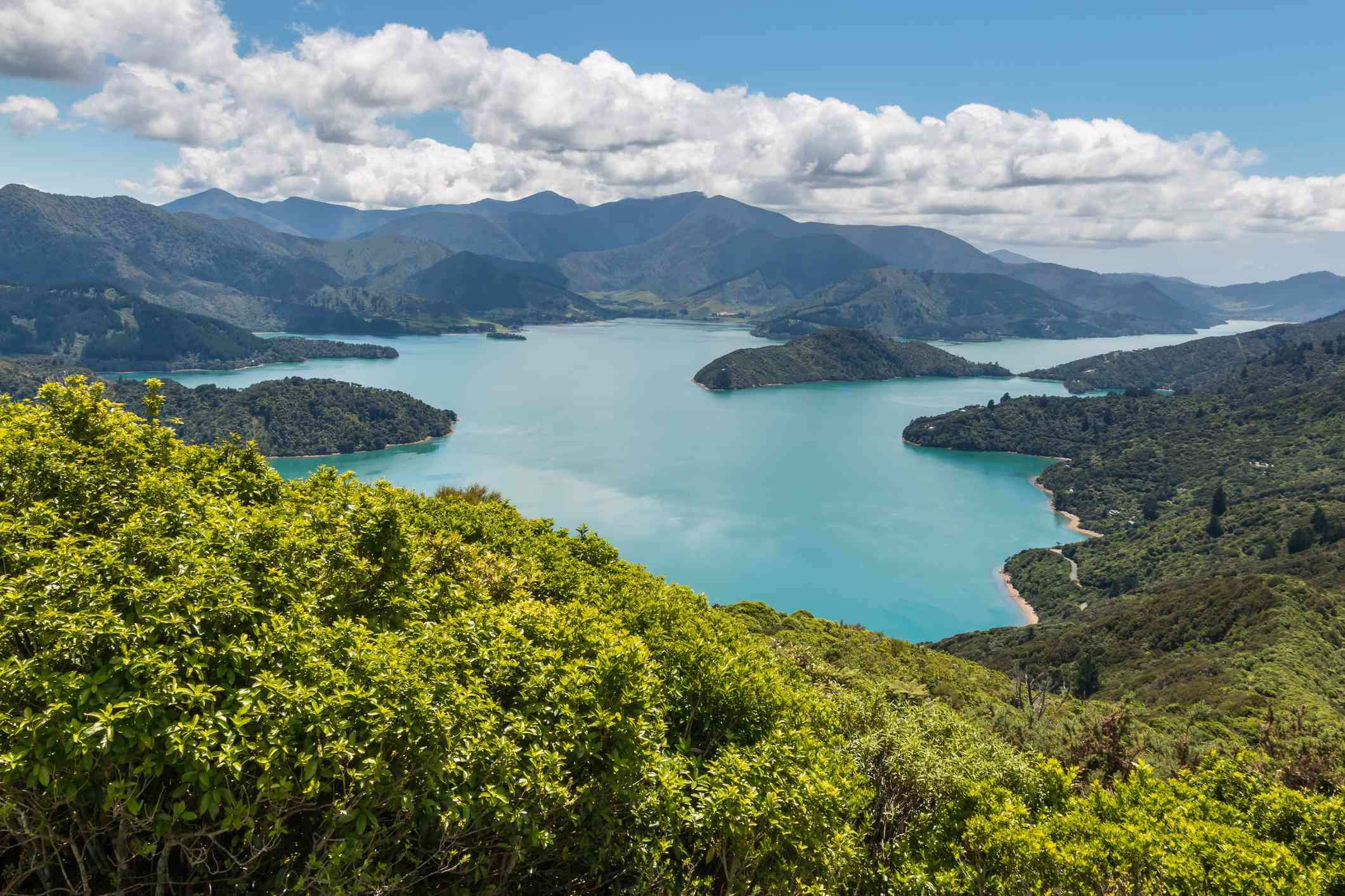 aerial view of Queen Charlotte Sound in Marlborough Sounds