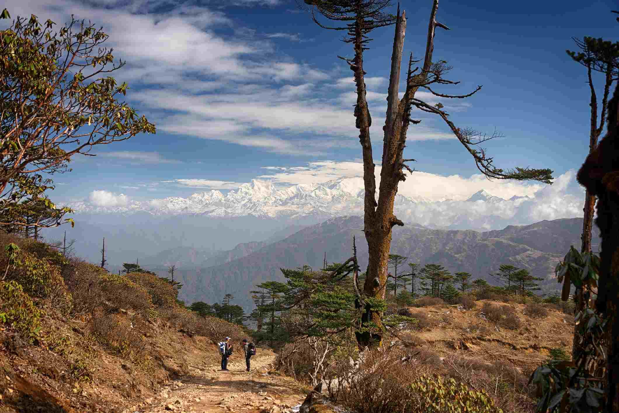 View while trekking from Sandakphu to Phalut, Darjeeling
