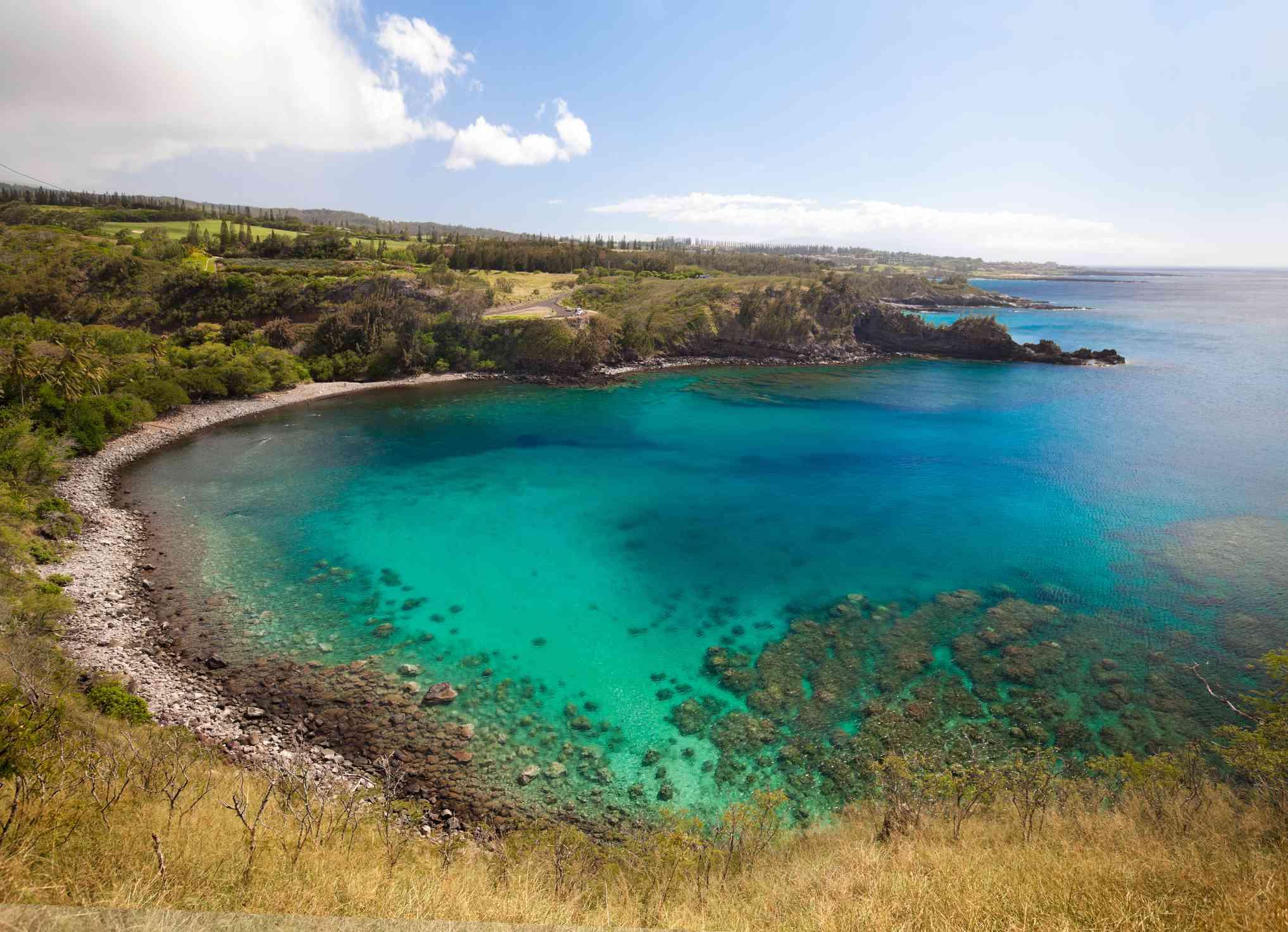 Honolua Bay in Maui, Hawaii