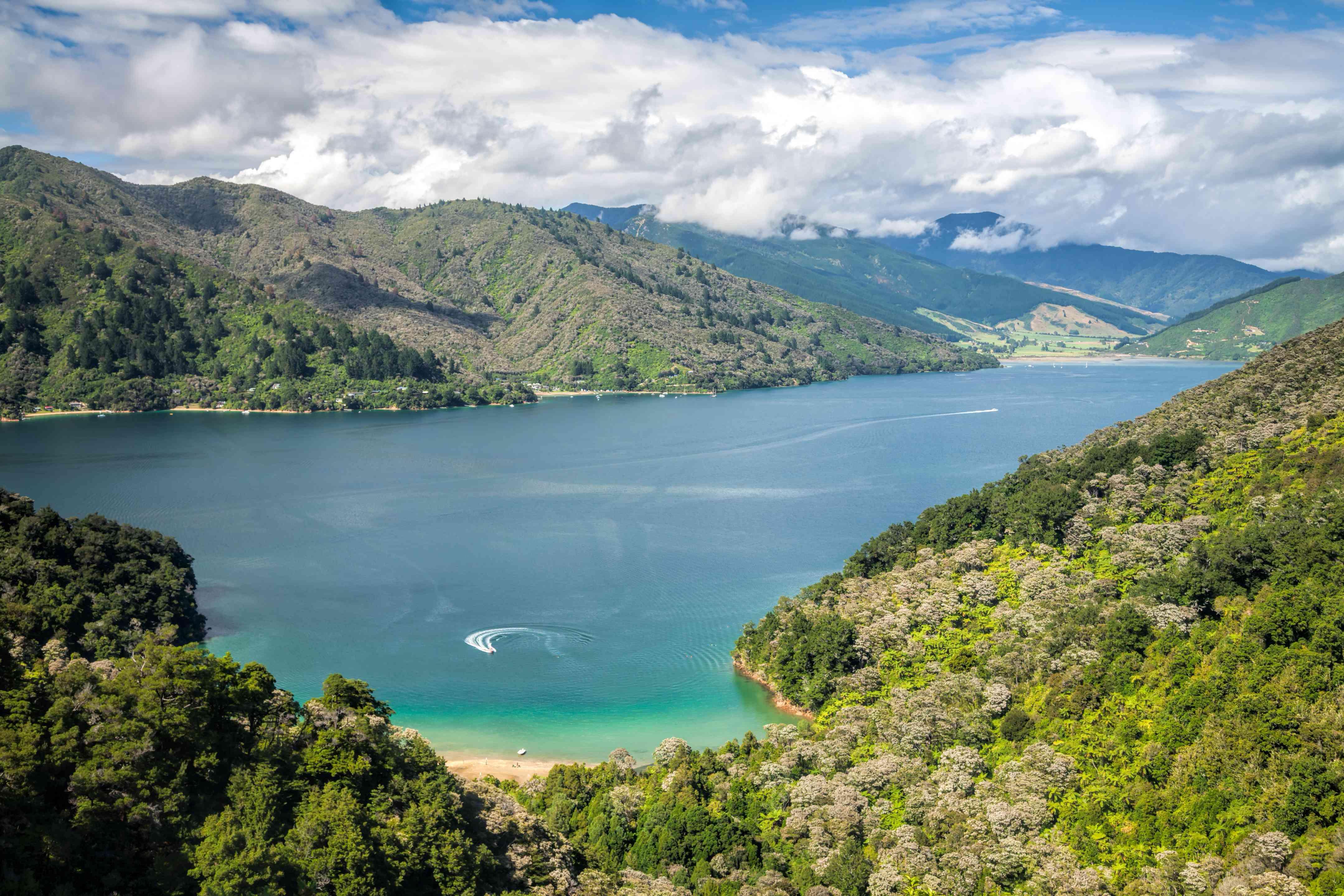 Vista sobre el brazo Grove de Queen Charlotte Sound desde el Queen Charlotte Track en Nueva Zelanda