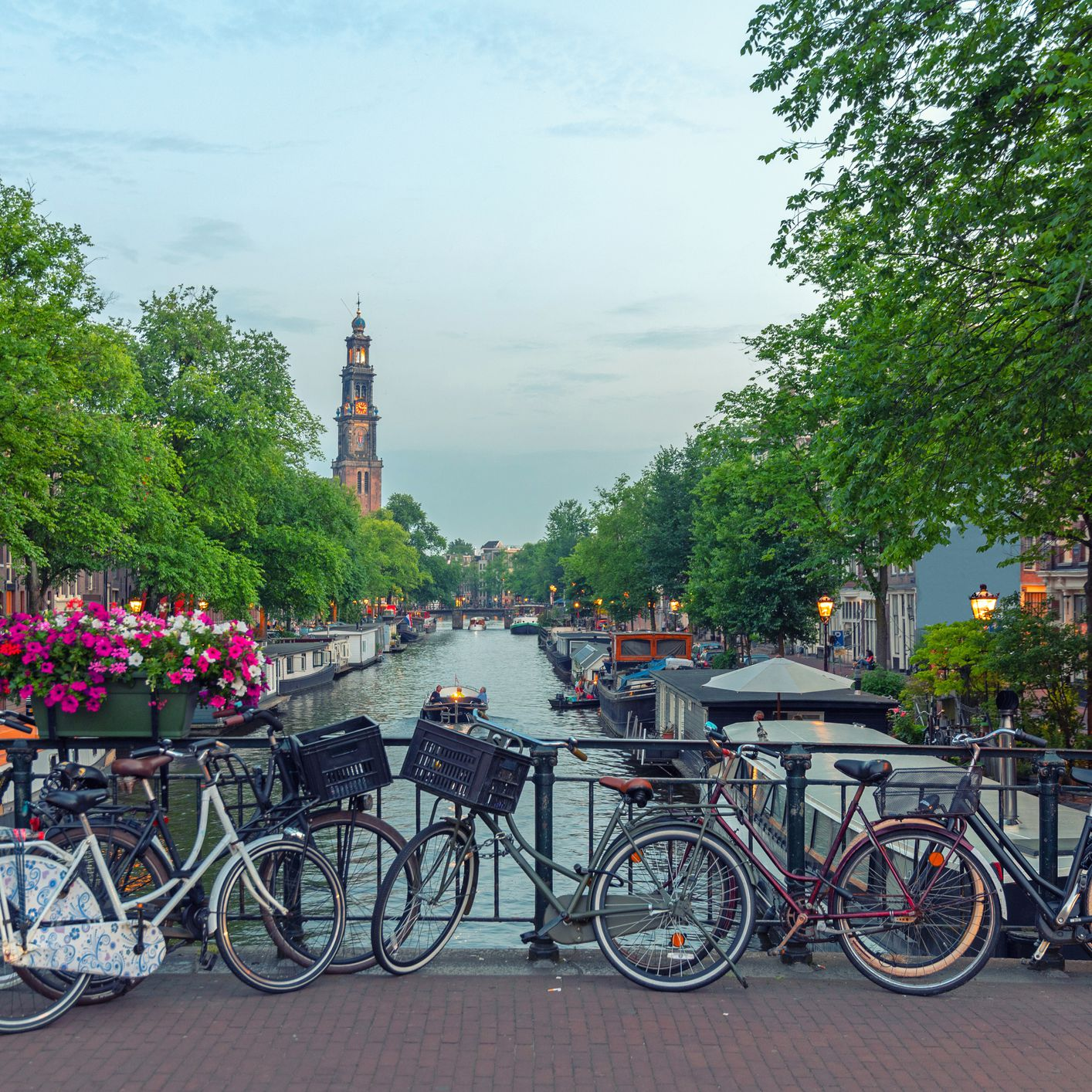 Your Trip to Amsterdam: The Complete Guide