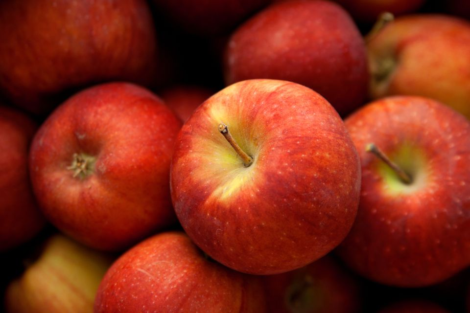 Close-up of Apples