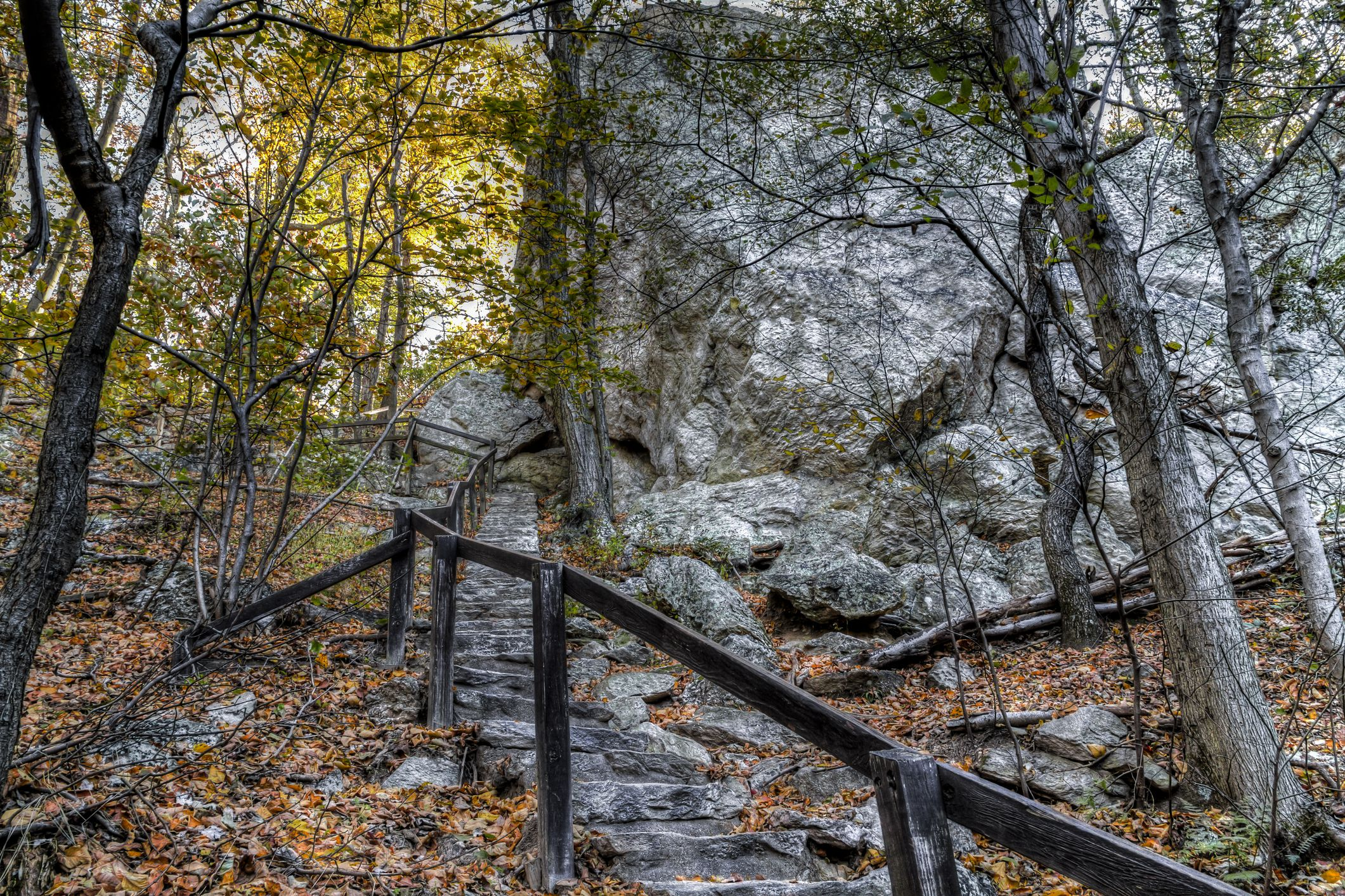 Deep Woods and Winding Stone Stairway leading to the top of Sugarloaf Mountain in Maryland.