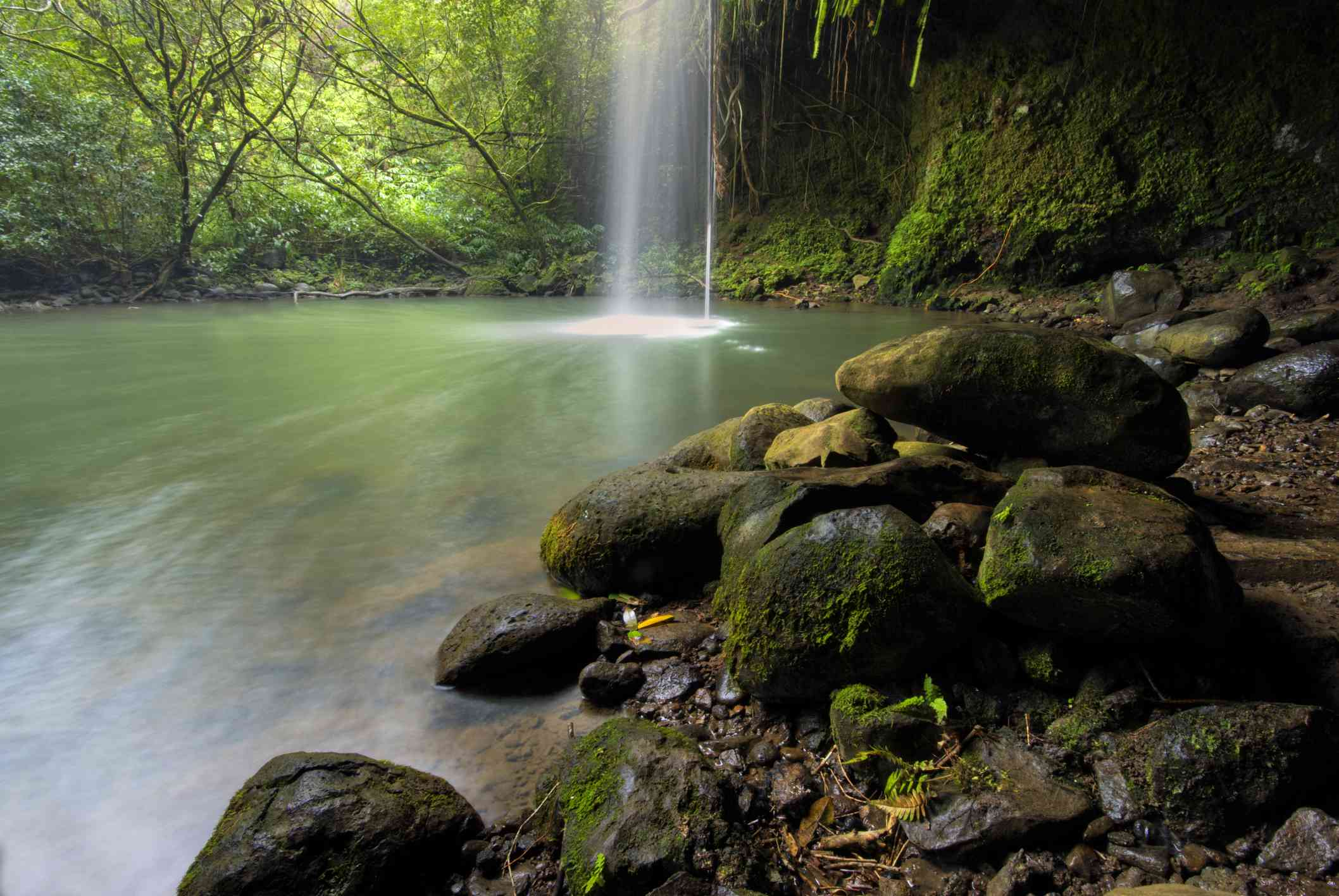 Twin Falls off of the Road to Hana on Maui