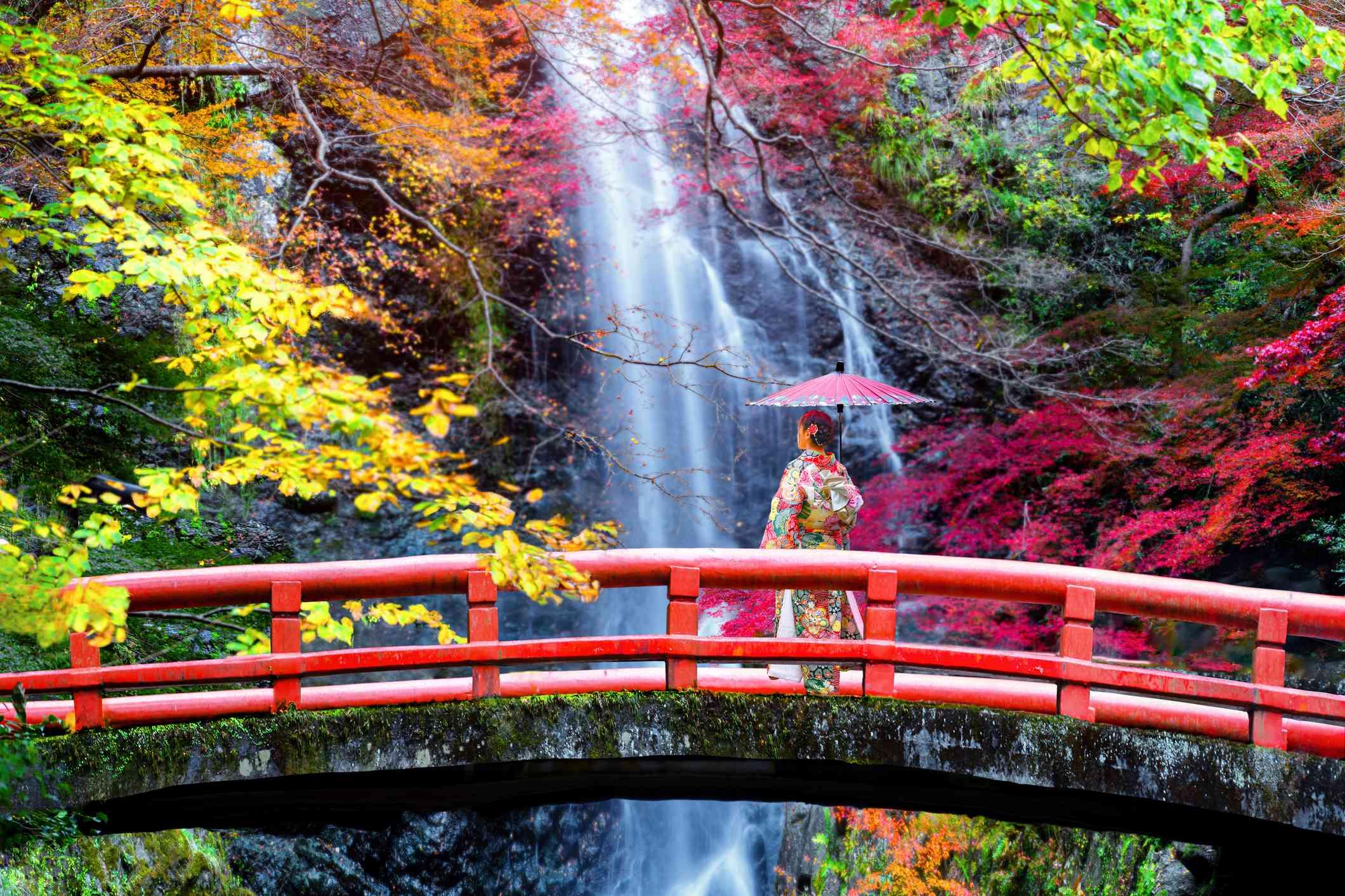 woman in kimono on a red bridge looking a waterfall in autumn season change in Minoo park