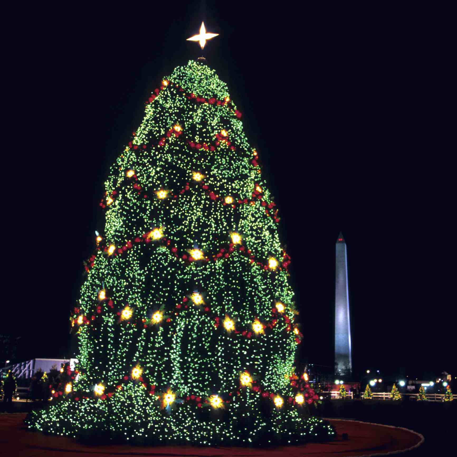 10 Ways to Celebrate the Holidays in Washington D C