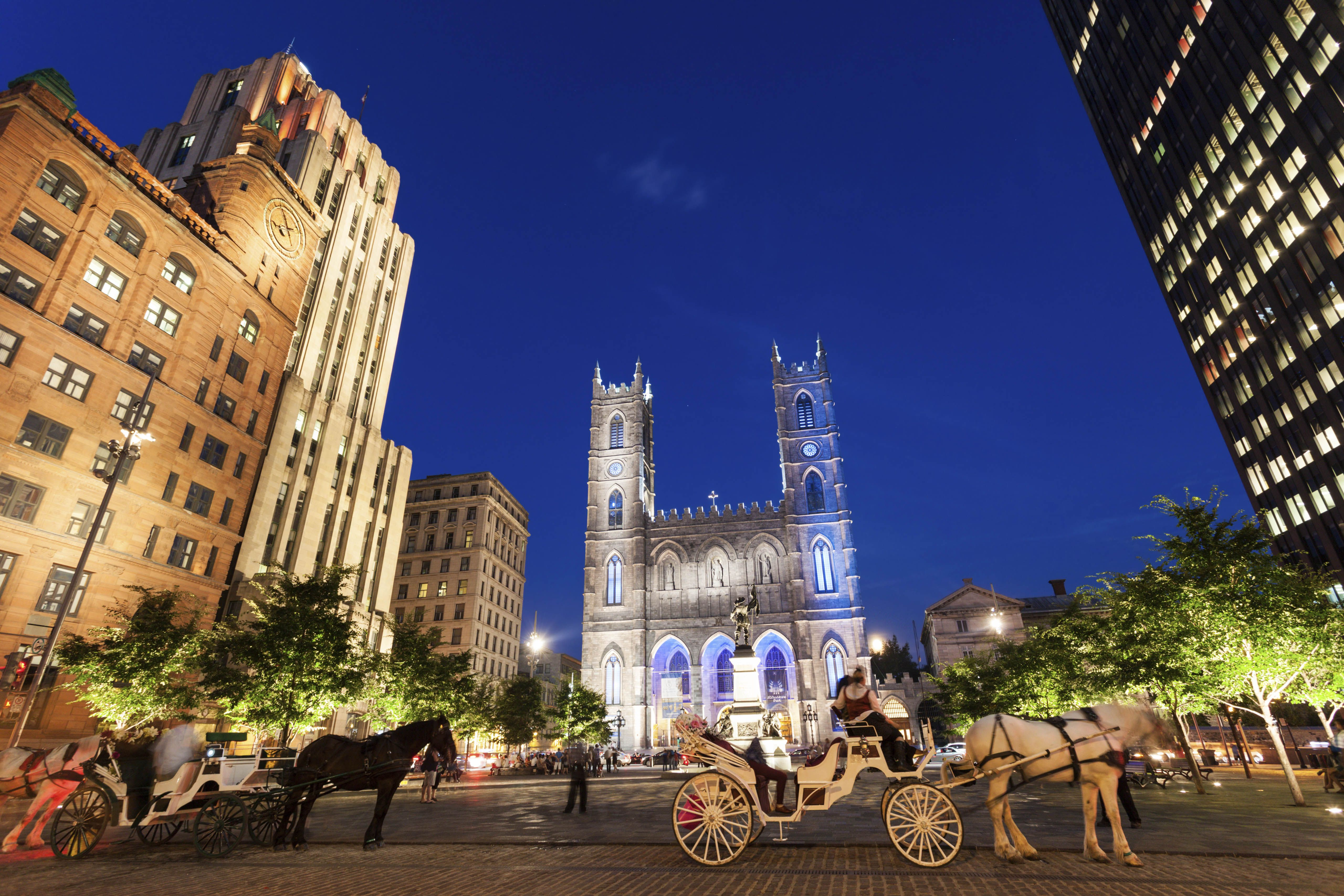 Horse drawn carriages in front of the Notre Dame Basilica in Montreal