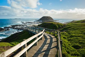 A wooden boardwalk leading out to a rocky headland on Phillip Island, Australia