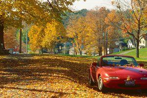 Litchfield CT Fall Photo