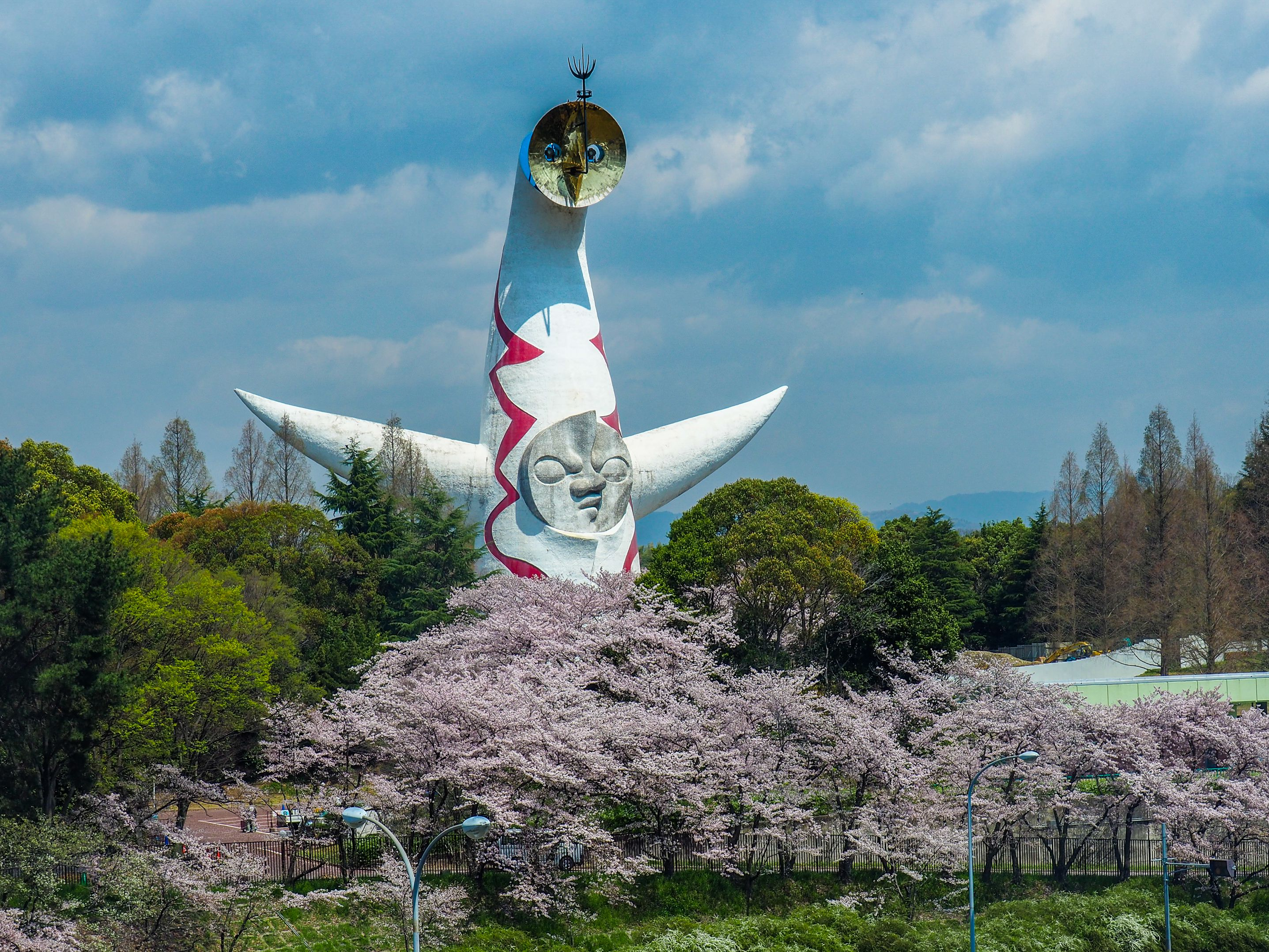 Cherry Blossoms in front of the Tower of the sun