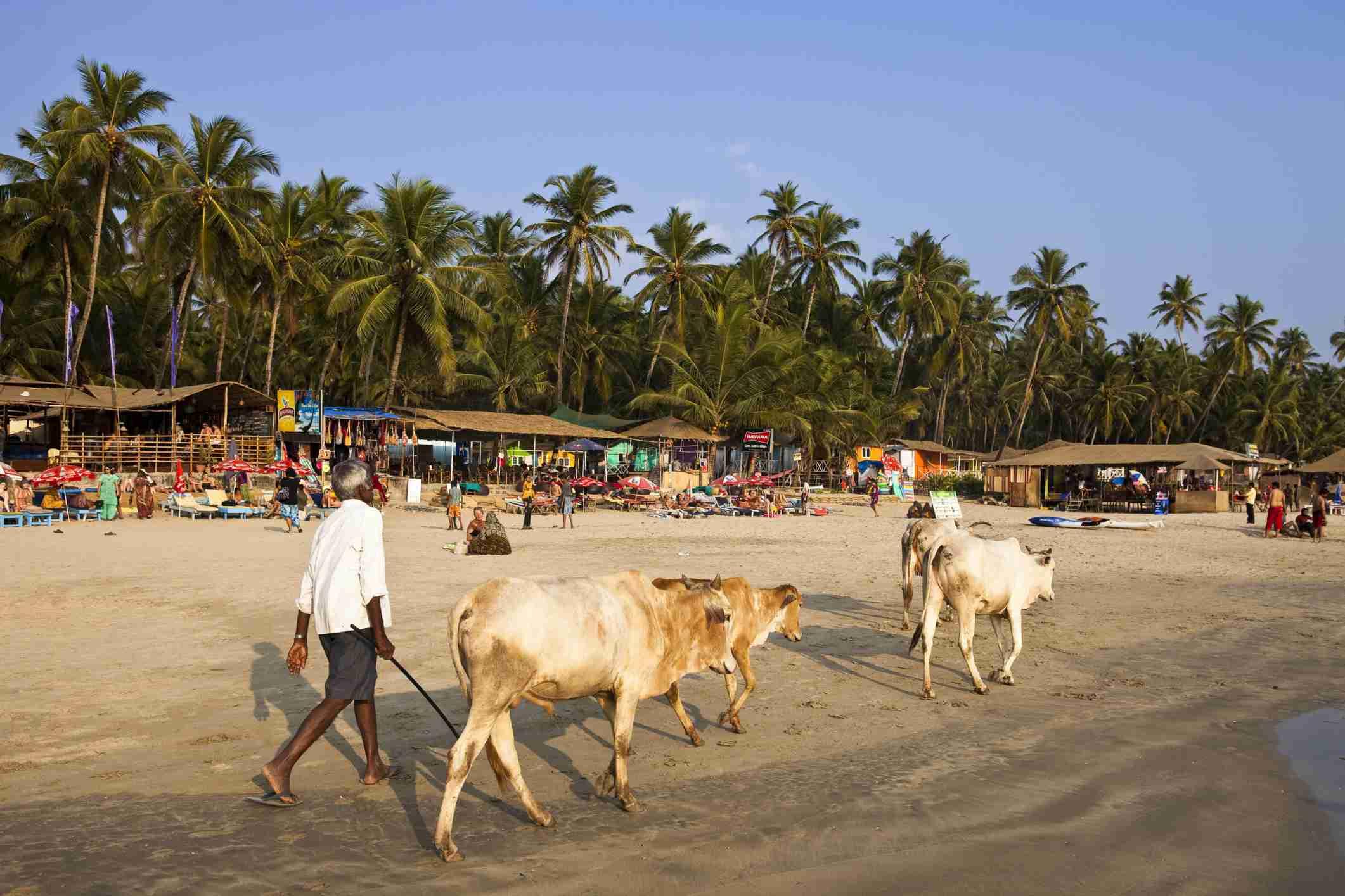 Romantic Places to Visit in Goa