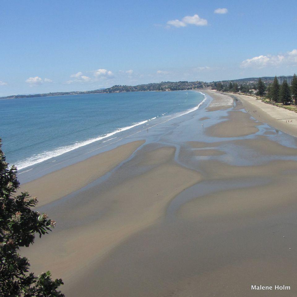 Auckland Region Walks And Hikes
