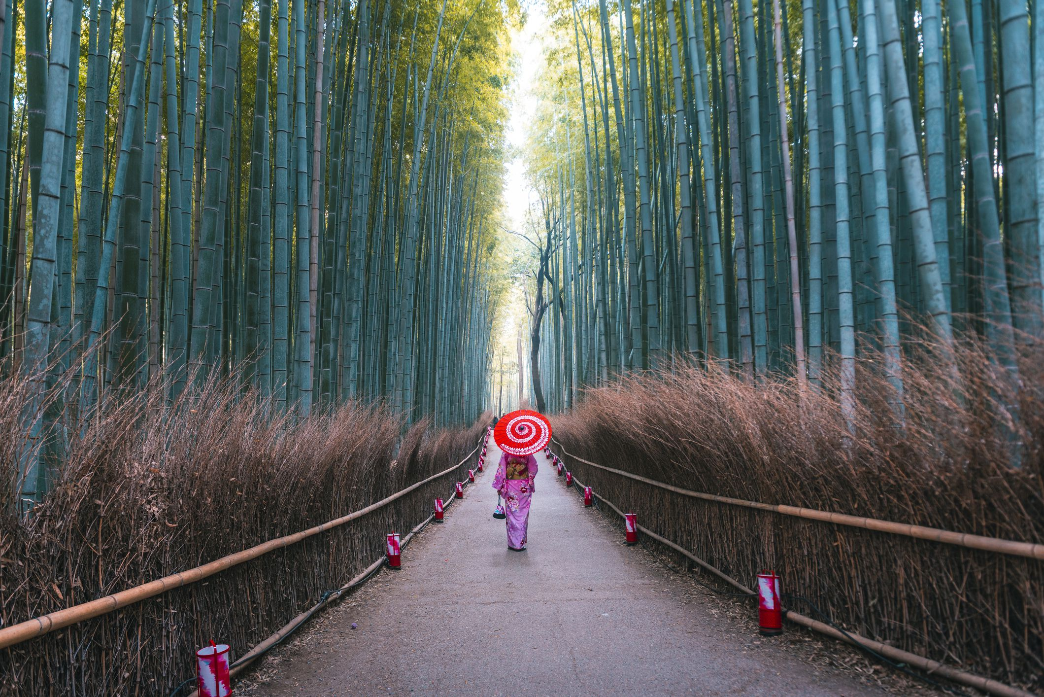 48 Hours in Kyoto: The Ultimate Itinerary