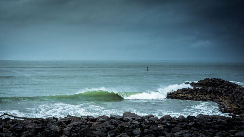 Best Clamming Beaches In Washington