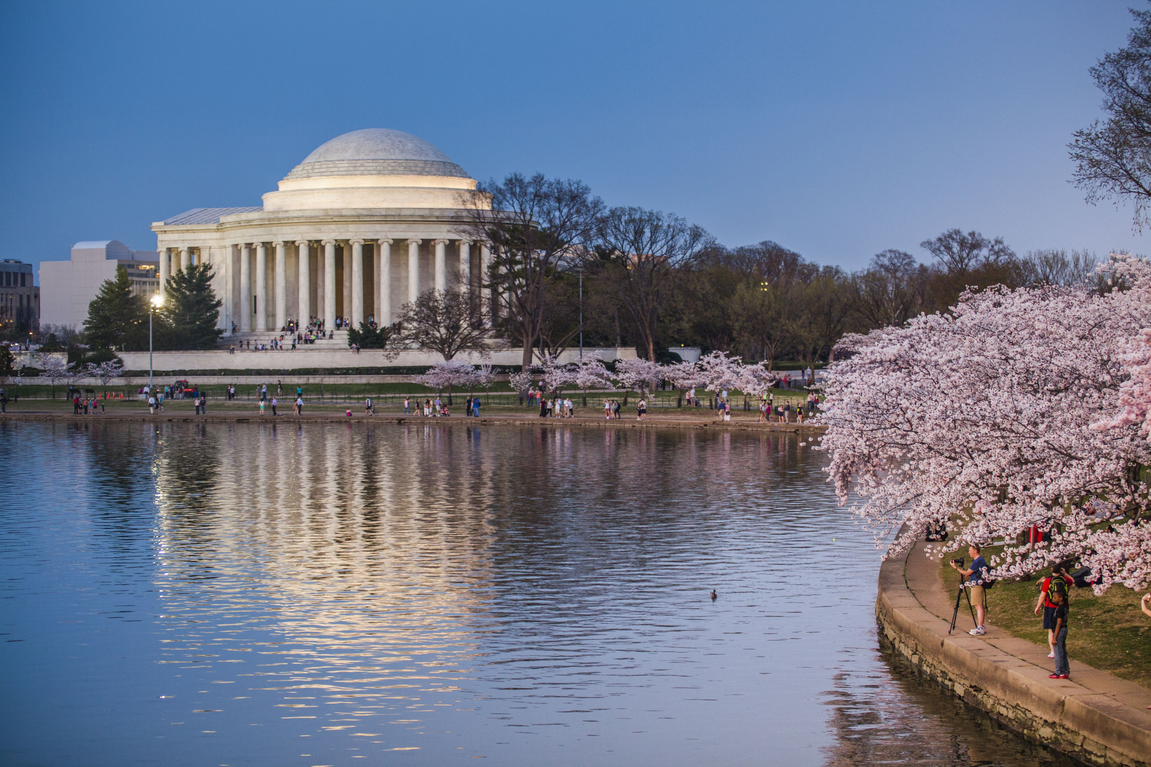 March 2018 Festivals and Events in the Washington DC Area