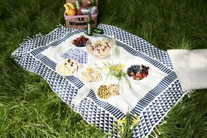Healthy picnic snacks on a blanket in grass - stock photo