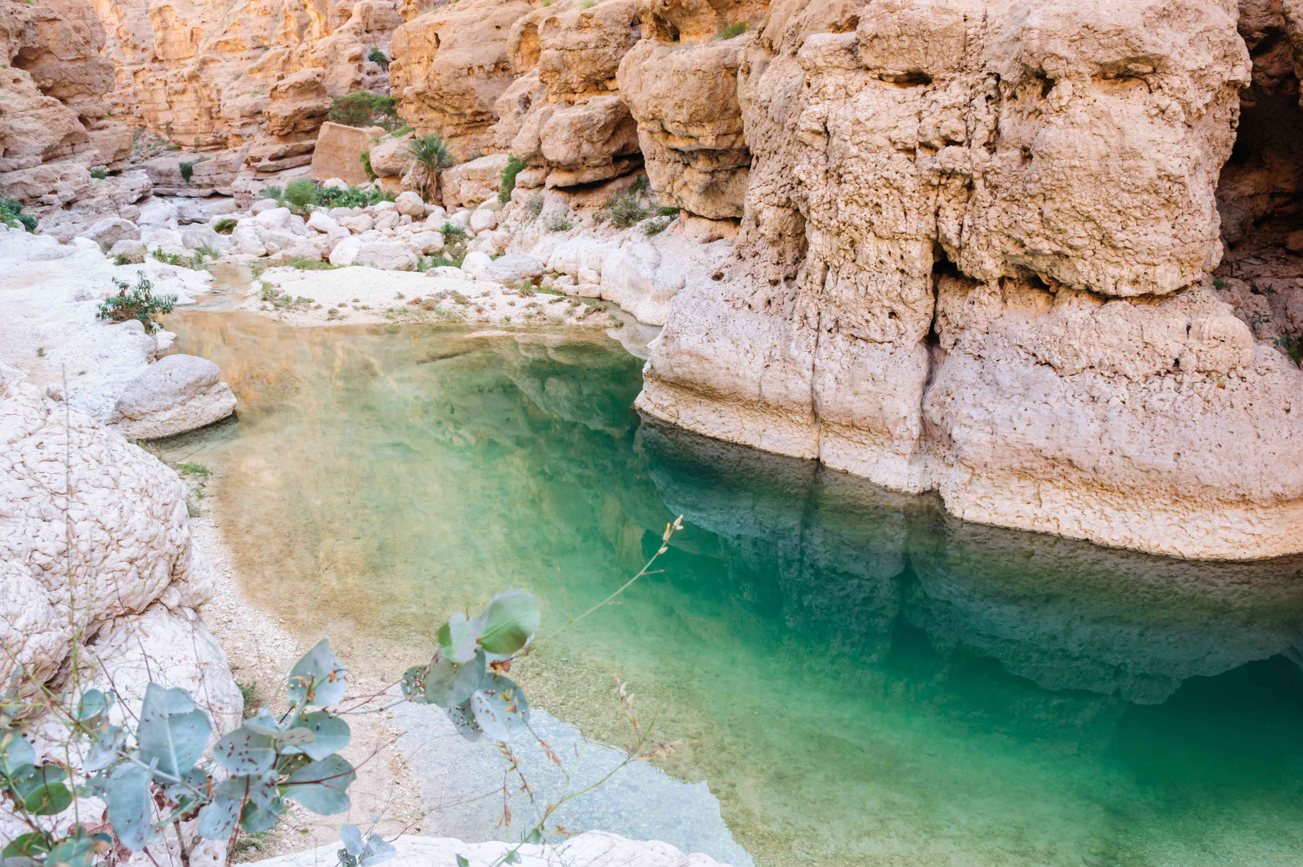 Greenish blue waters surrounded by stone at Wadi Shab