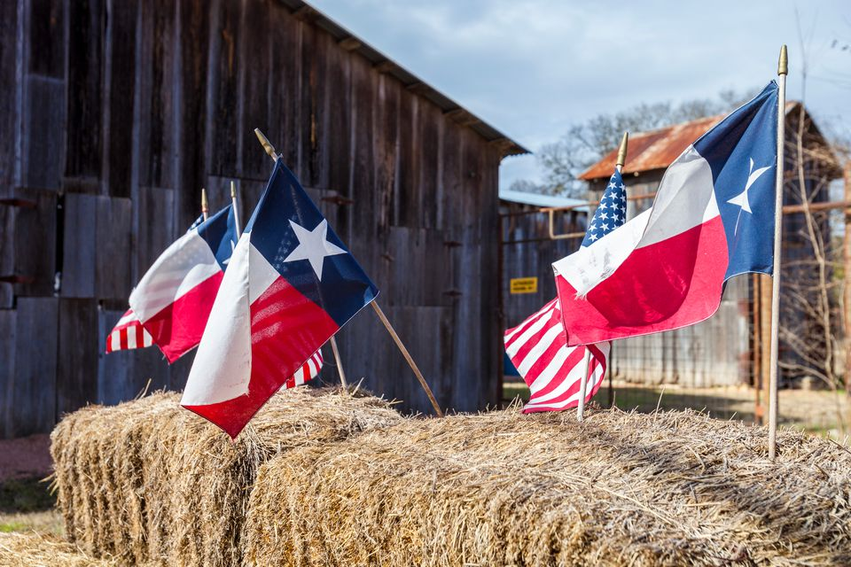 Close-up of Texas flags and American flags
