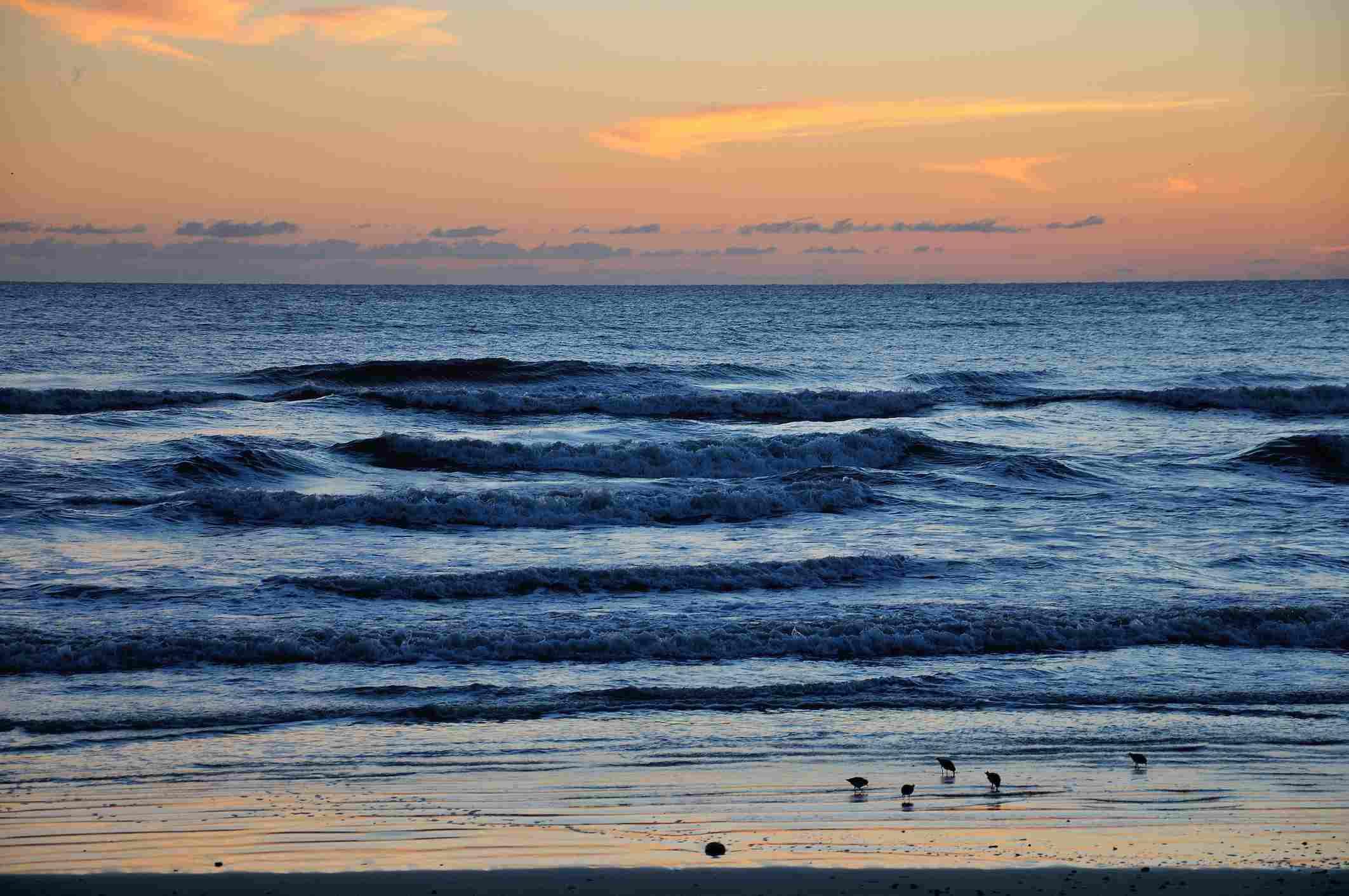 New Smyrna Strand bei Sonnenaufgang