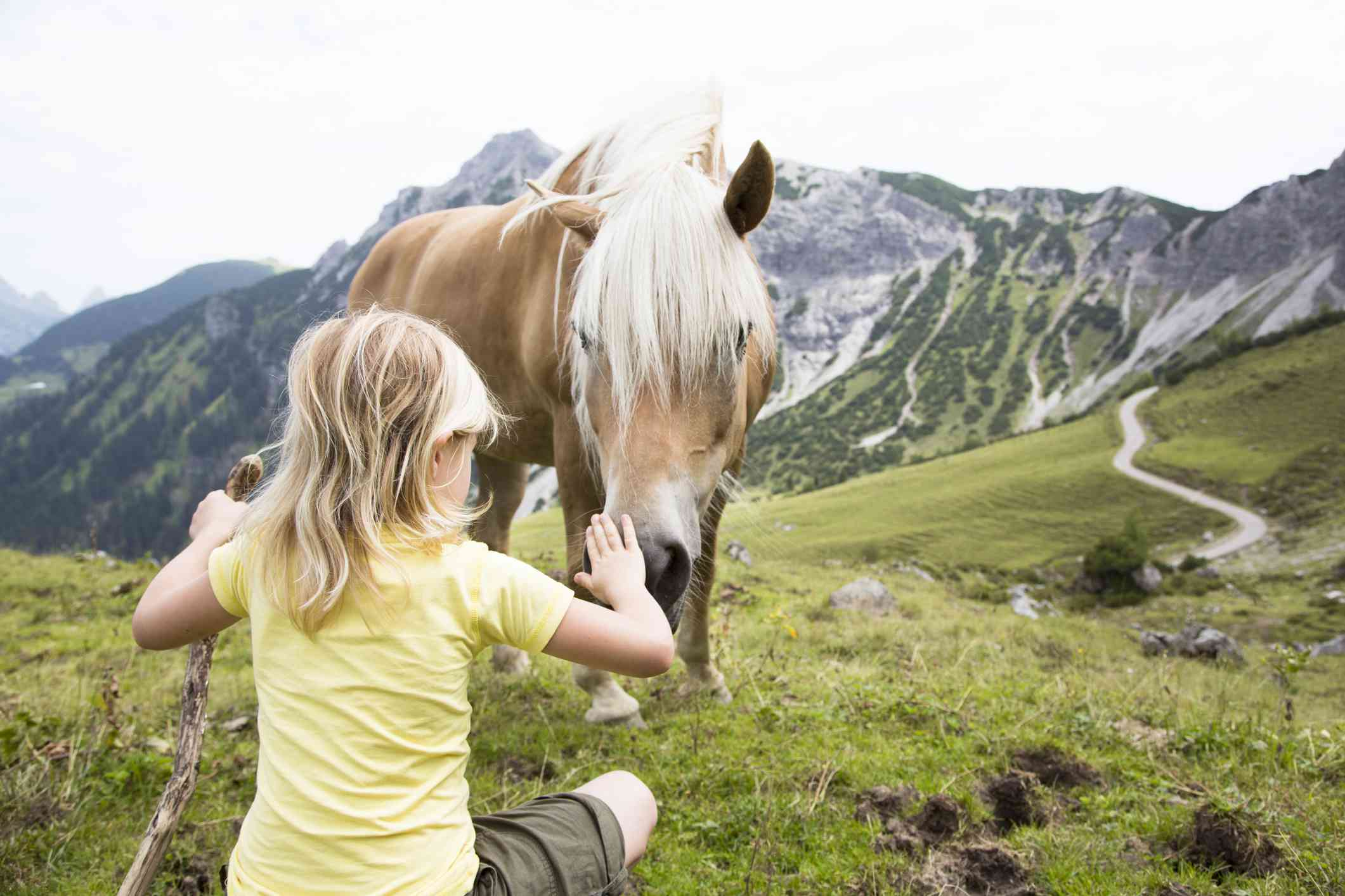 blonde child in yellow t-shirt patting the nose of a brown horse in a mountain landscape