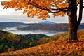 Autumn leaves in Vermont