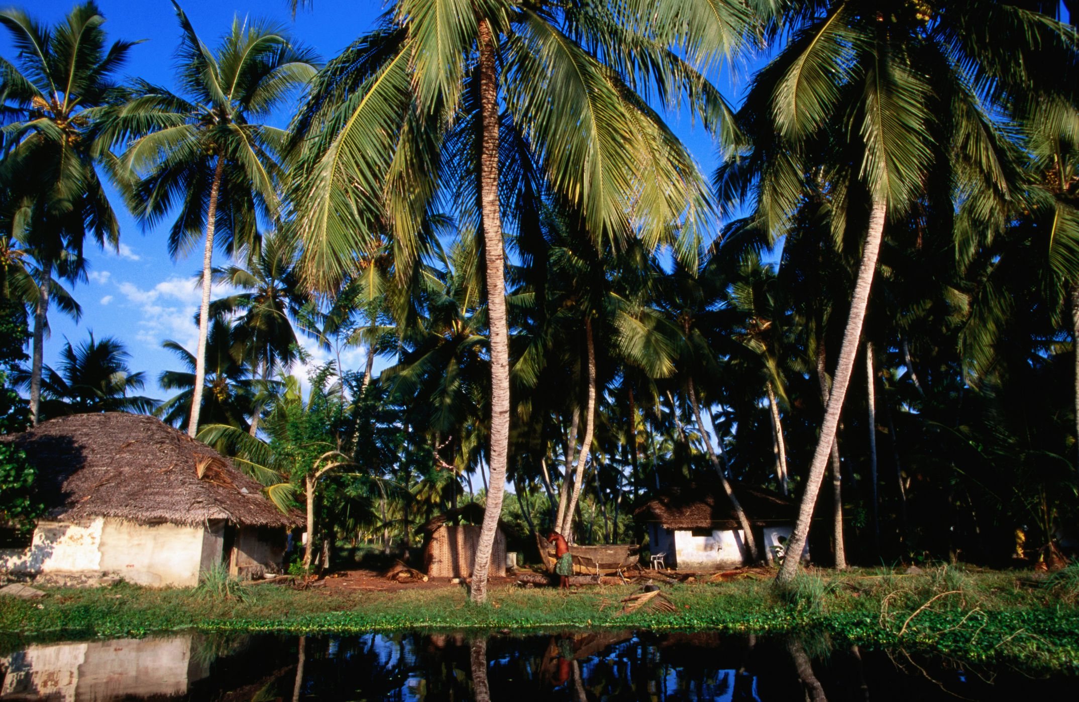 Village along the Kerala backwaters