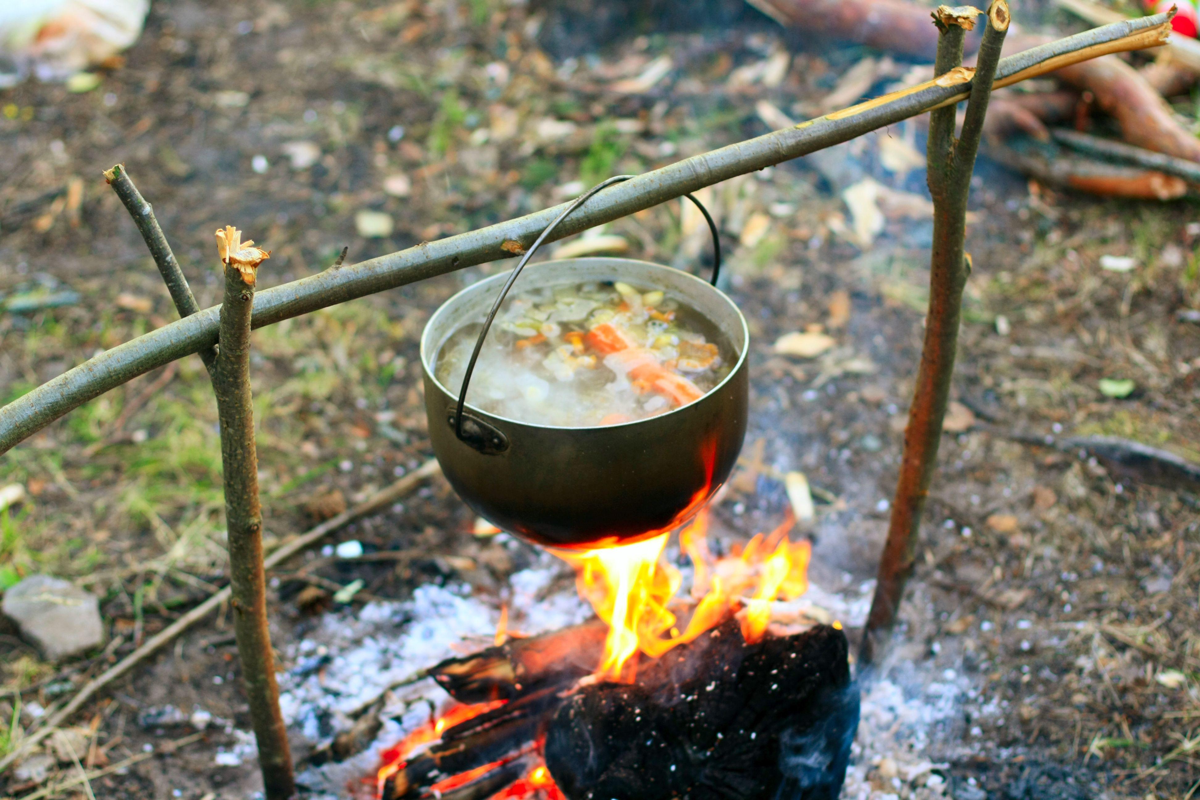Ukha Fish Soup